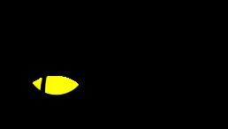 Logo Hidden